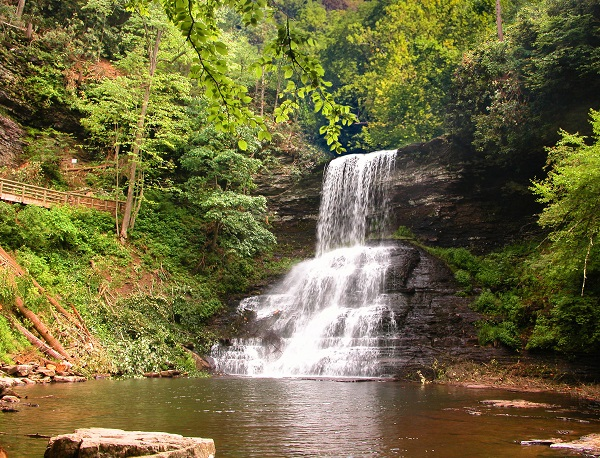 waterfalls in wooded area