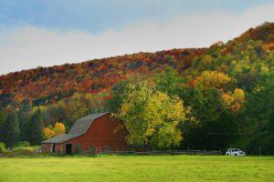 fall foliage along Rt. 6