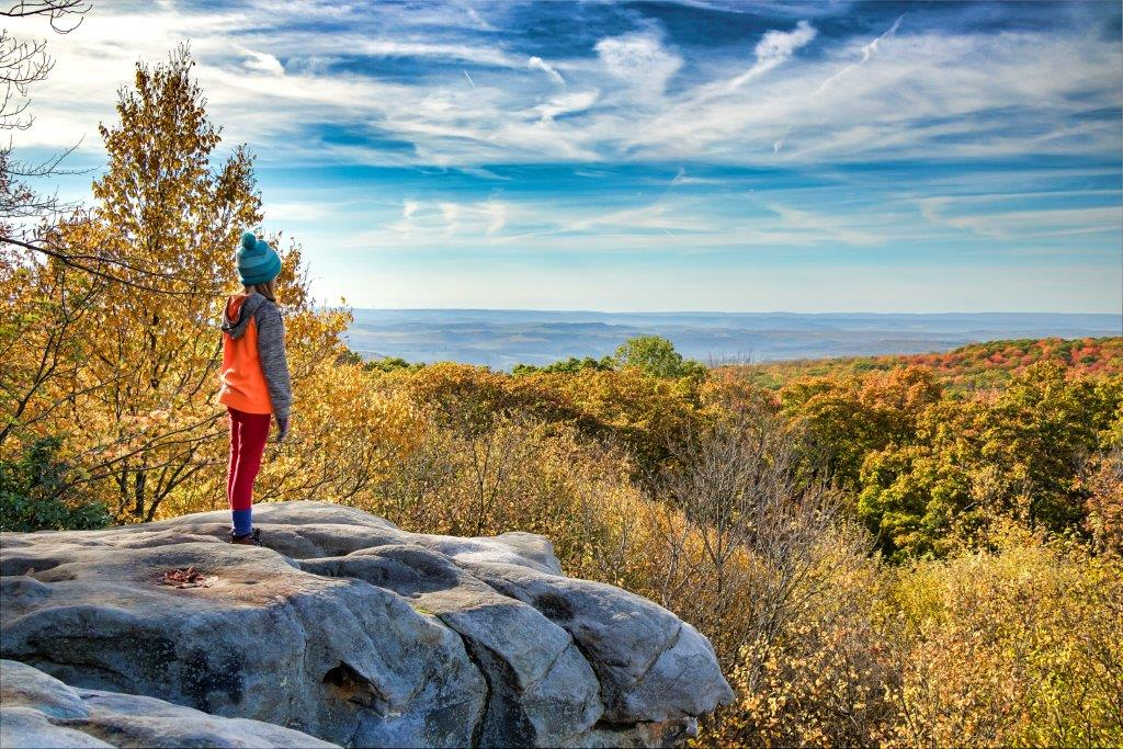 Photo of Laurel Highlands