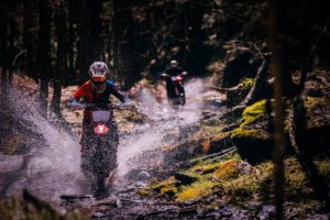 person on dirt bike in woods