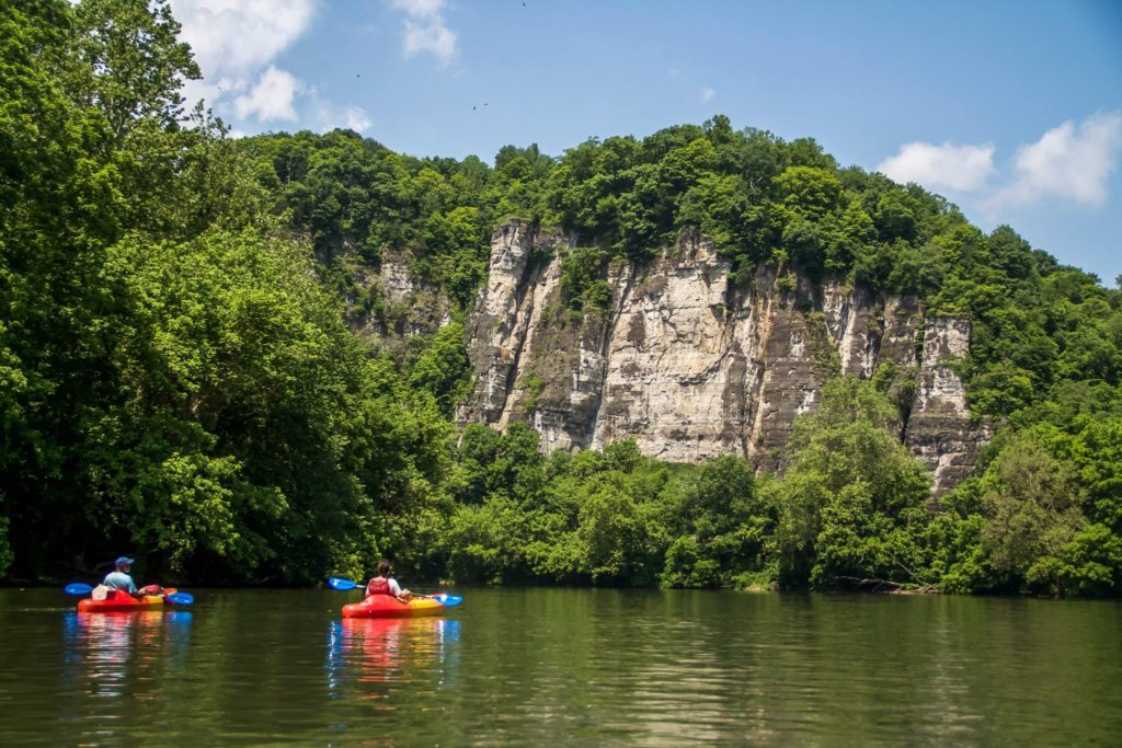 Palisade Cliffs from New River canoe